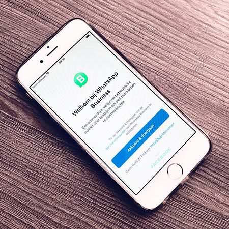whatsapp business wordpress